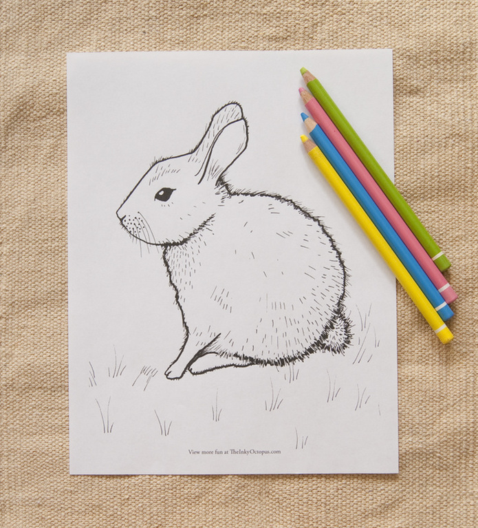 printable bunny rabbit coloring page