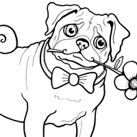 Pug coloring pages realalistic coloring pages for Cute pug coloring pages