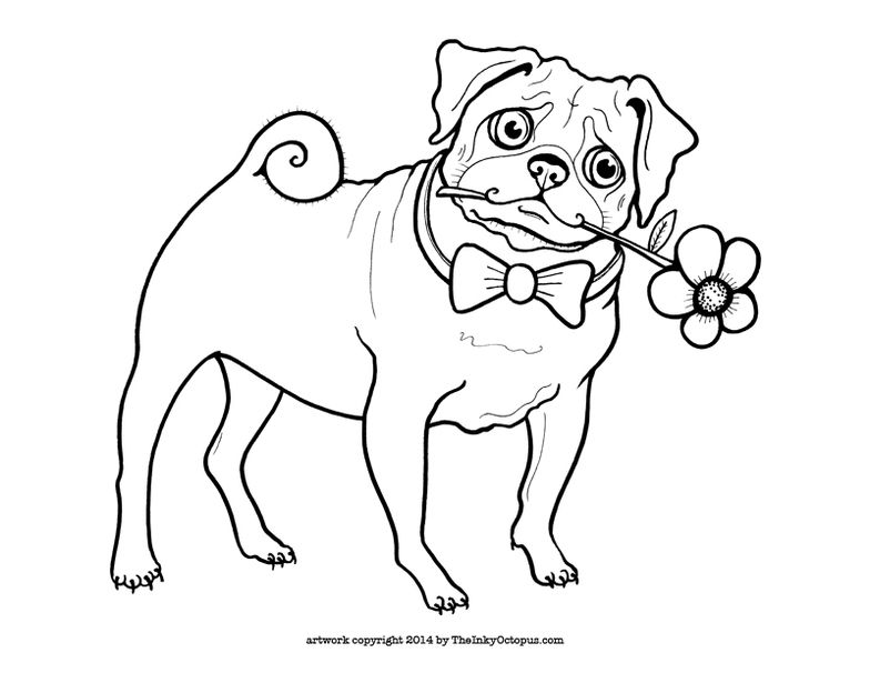 free pug coloring pages - photo#11