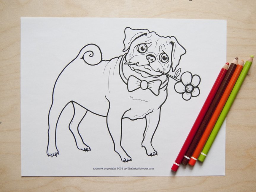 Free printable pug coloring page from TheInkyOctopus.com